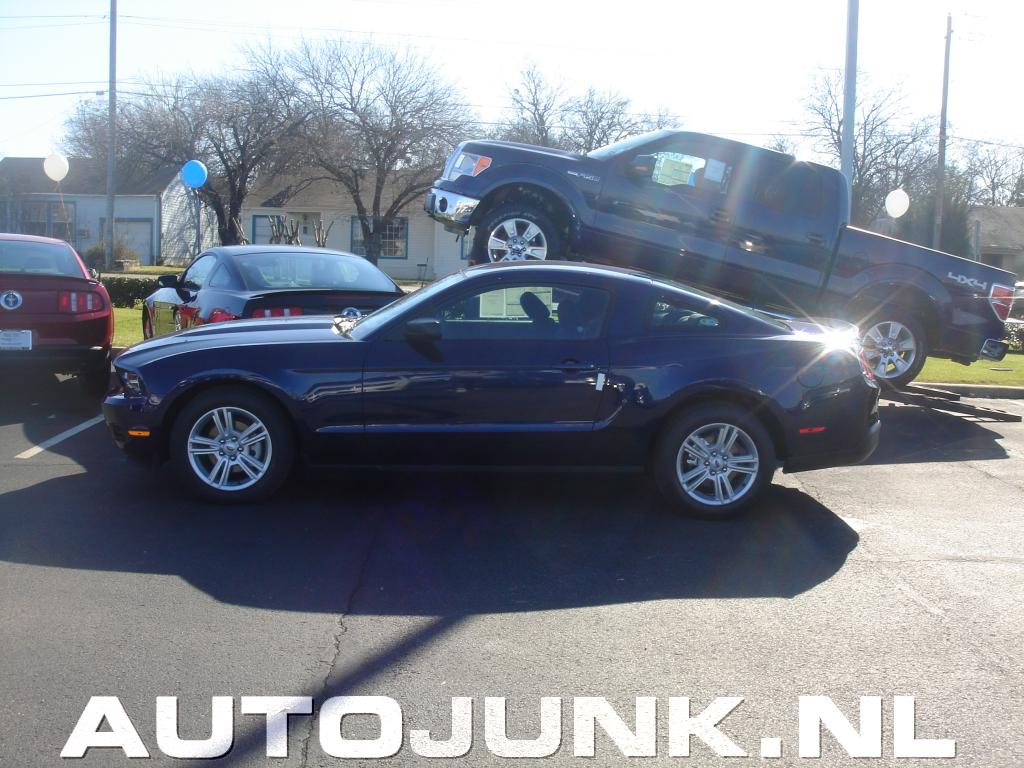 ford mustangs dealership in dallas foto 39 s 49300. Cars Review. Best American Auto & Cars Review