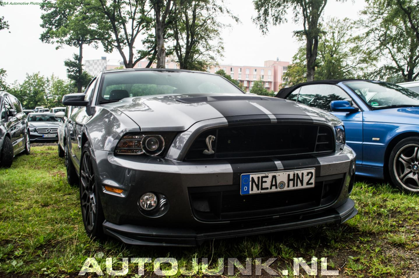 ford mustang shelby gt500 2013 foto 39 s 182599. Black Bedroom Furniture Sets. Home Design Ideas