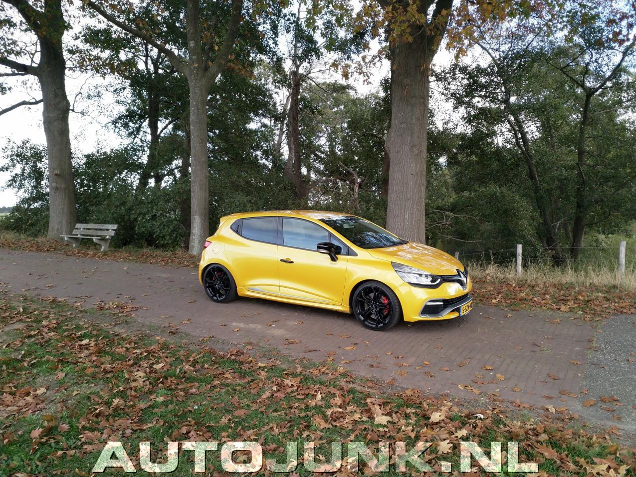 clio iv rs in de herfst jaune sirius liquid yellow foto 39 s 228514. Black Bedroom Furniture Sets. Home Design Ideas
